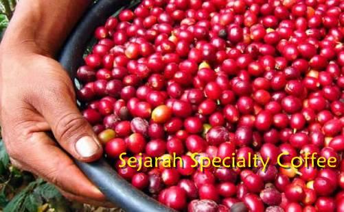 cherry-bean-matang-sempurna-Specialty-Kopi
