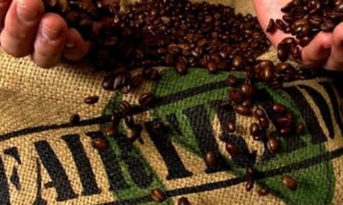 Sertifikasi Fair Trade