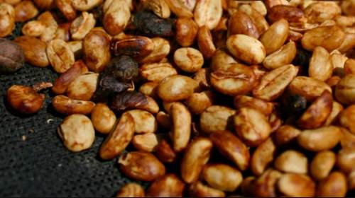 honey cofffe processing