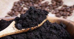 Studi Biogas Dari Ampas Kopi
