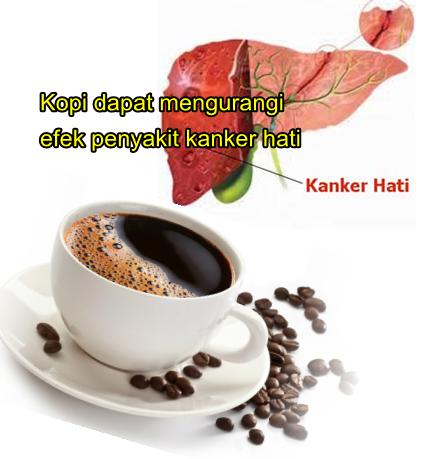 Kopi dapat mengurangi efek penyakit kanker hati | Sada Coffee