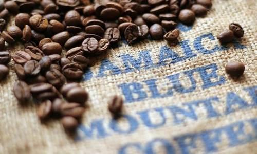 Positif dan Negatif Kafein kopi